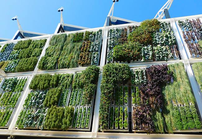 EOI Proyectos Habitat Sostenible